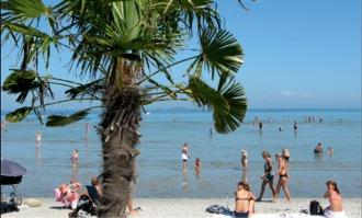 Palm Beach Frederikshavn