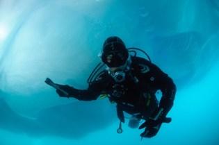 Diving Greenland Arctic